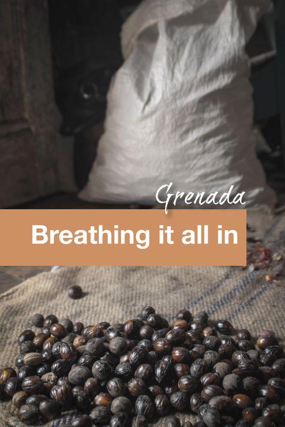 Grenada Breathing it all in - Pinterest