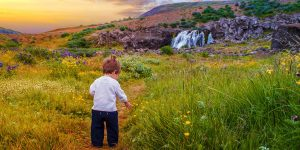 Iceland isn't just a playground for adults, there is so much to do in Iceland for kids. Check out some of the best things to do in Iceland for families.