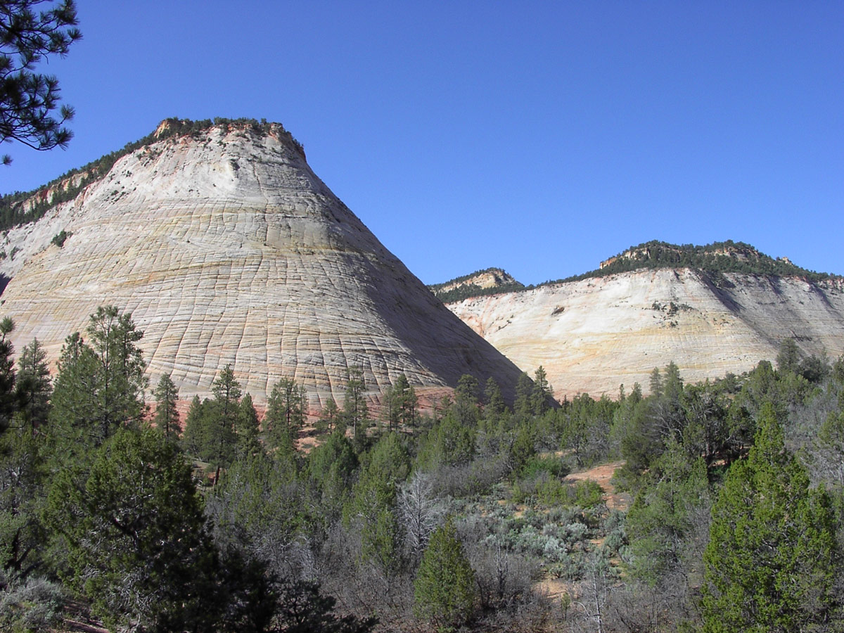 United States - Utah - Zion National Park