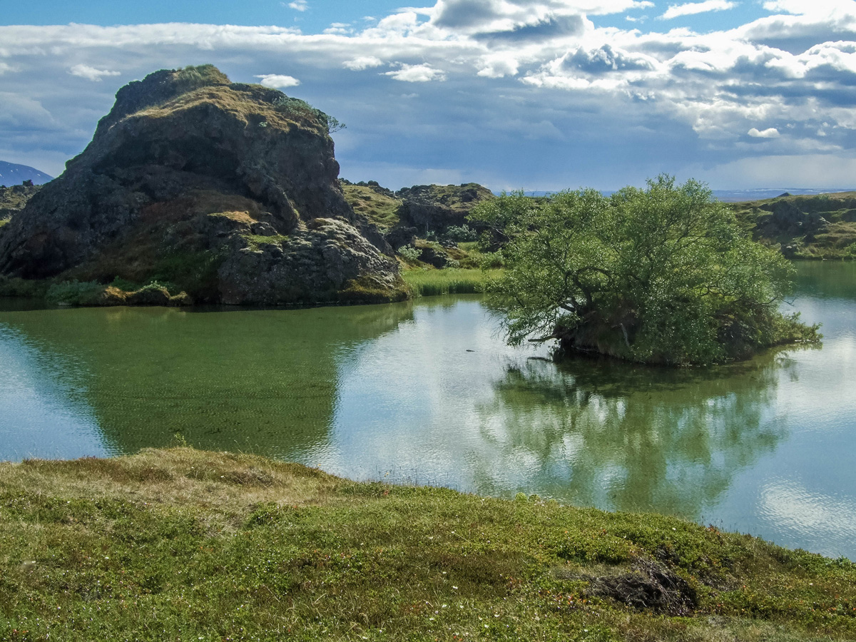 The lush green surroundings of Lake Myvatn in Iceland