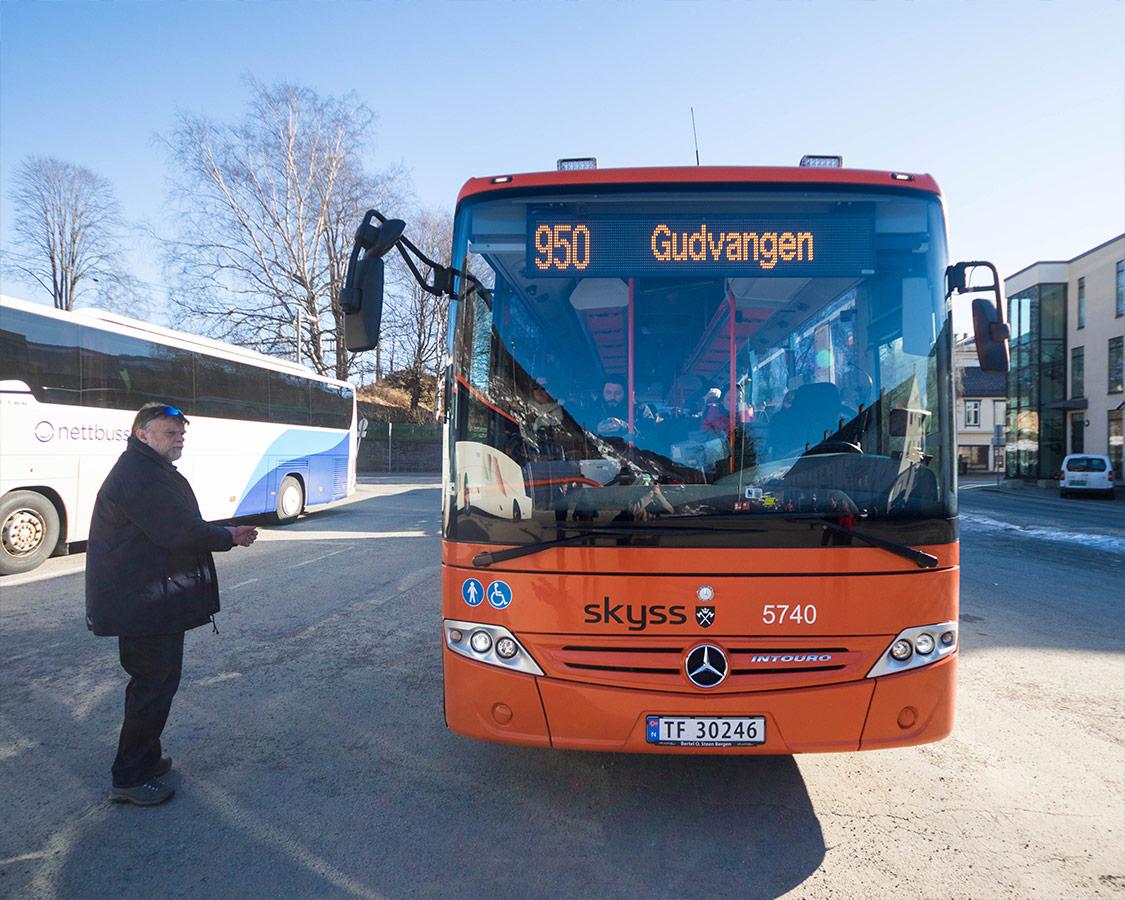 Norway In a Nutshell Bergen Bus To Gudvangen-
