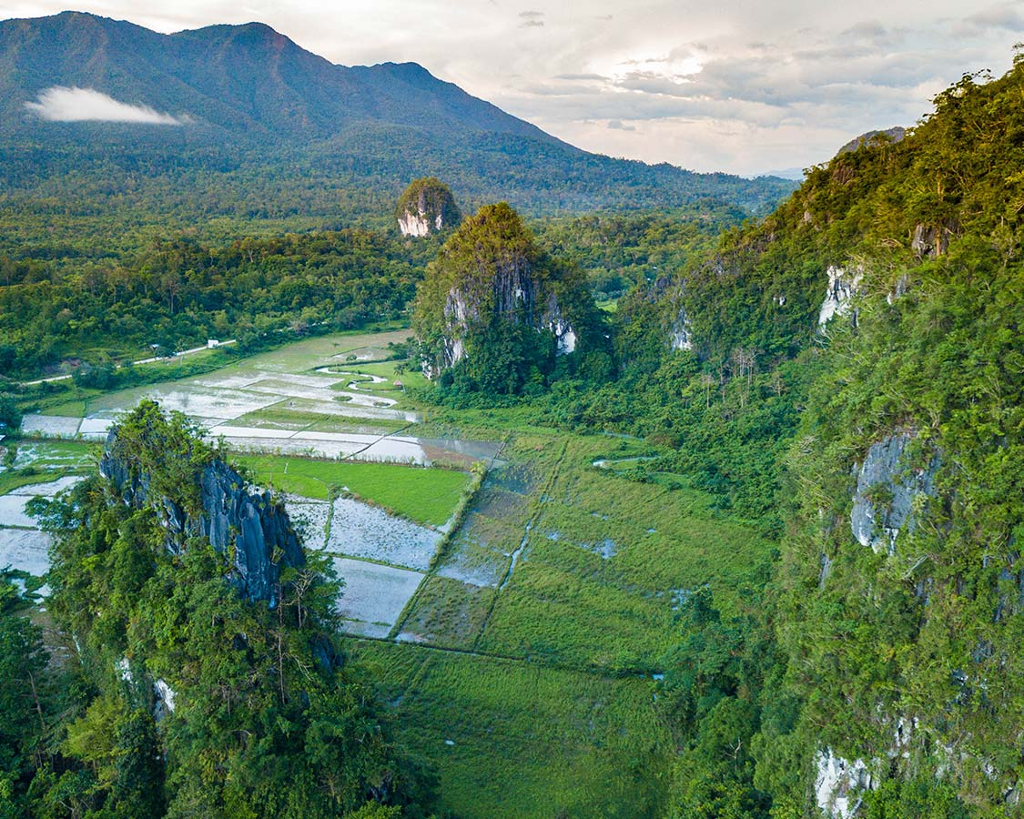 Top Things To Do In Puerto Princesa Palawan Philippines