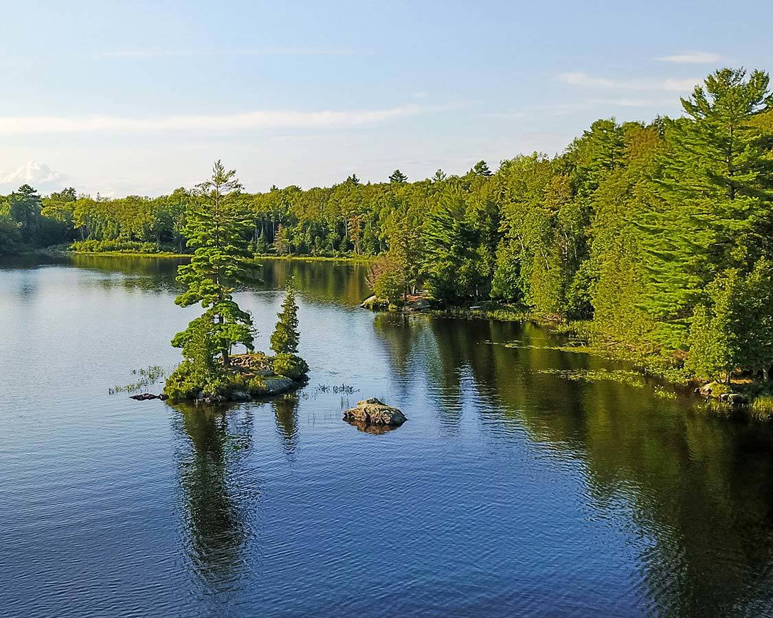 Shoreline in Silent Lake Park