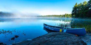 Kawartha Lakes Provincial Park Camping