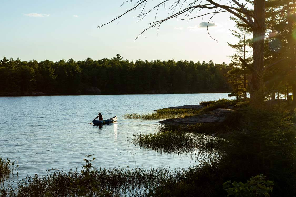 Kawartha Lakes Provincial Park Canoeing