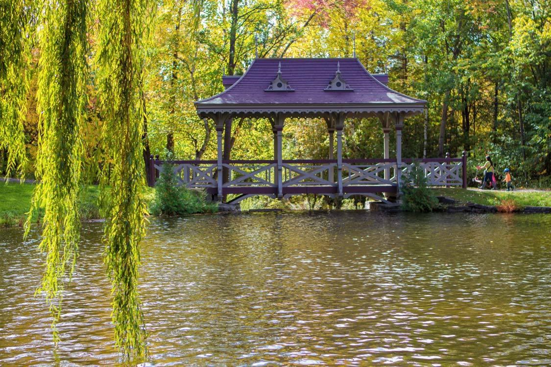 Peterborough autumn colour